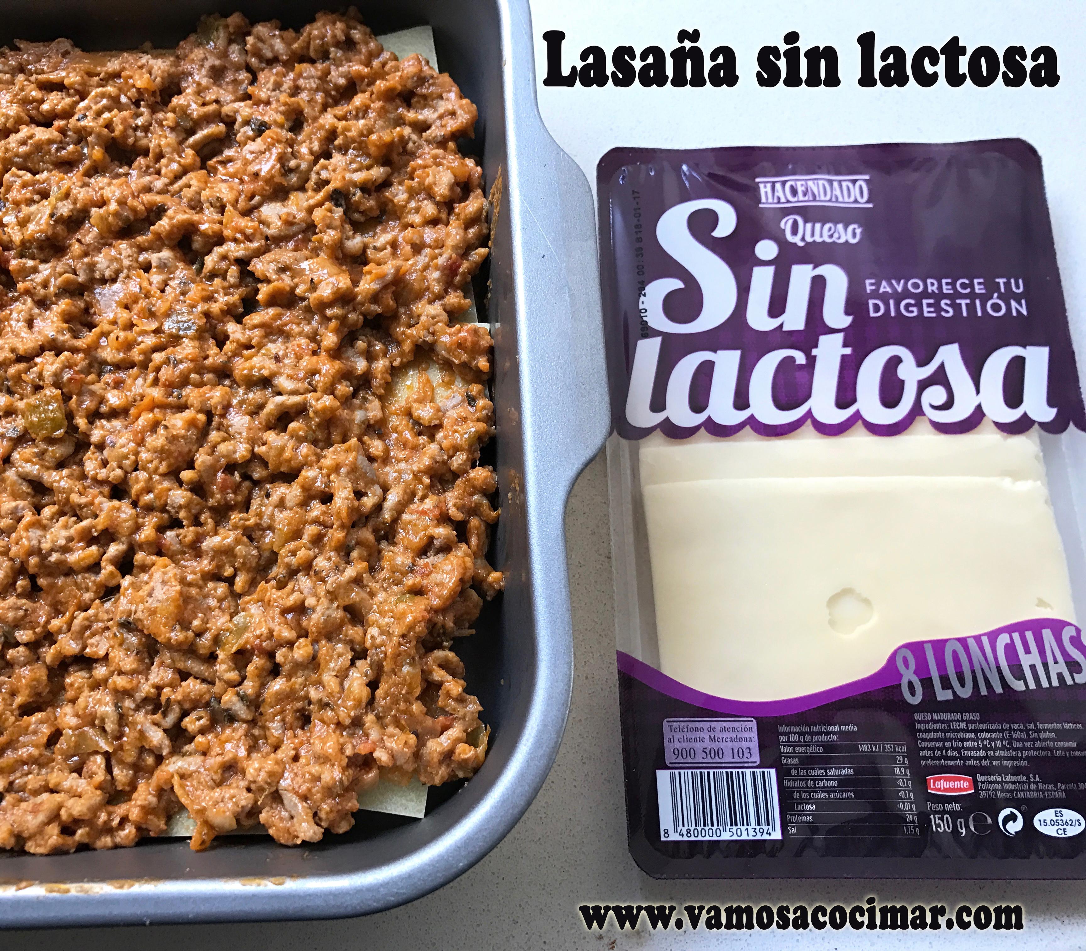 lasanasinlactosa2